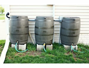 Rain Barrel Workshop @ Grimes Public Library | Rome | New York | United States