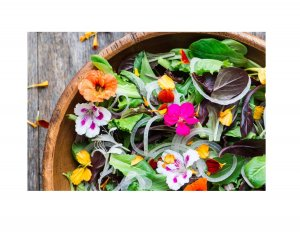 Garden With the Masters: Flavorful Flowers